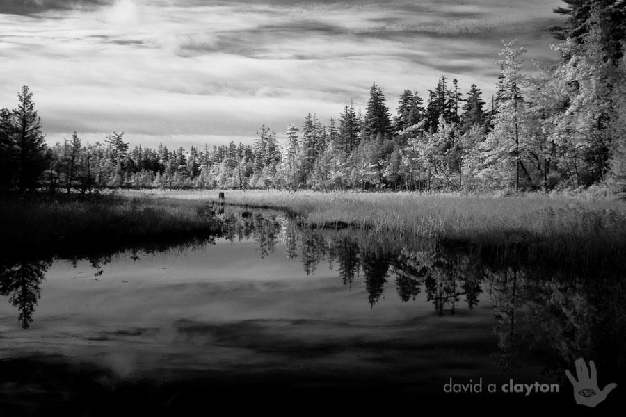 acadia national park 2009 - david a clayton - photography